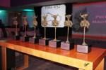 "Trofeos ""Minotauro"""