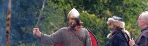 BANNER Pelayo, nuestro Rey