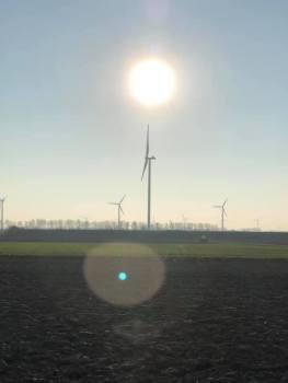 Wat een prachtweertje daar bij Boerderij Hoogendonk. Als je goed kijkt, zie je rechtsonder de windmolen de tractor van Boer Pait Peter Hoogendonk — bij Boerderij Hoogendonk.