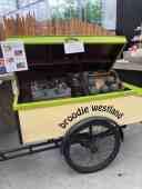 Heerlijke echte Westlandse watermeloentjes bij Lokaal Westland — bij De Bakker Westland.