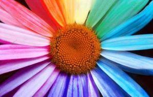 Χρώματα και διάθεση
