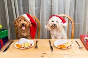 Δίαιτα πριν τα Χριστούγεννα: Εξαφανίστε 3,5 κιλά σε 2 εβδομάδες!