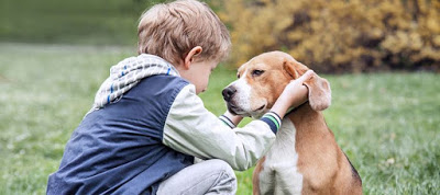 Read more about the article Κατοικίδια: Τα οφέλη τους για την ψυχική υγεία των παιδιών
