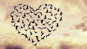 O κόμπος της αγάπης