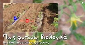 Πως φυτεύουμε βιολογικά. Tips και αποστάσεις φύτευσης