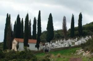 ΑΥΤΟ σίγουρα δεν το ήξερες… Γιατί φυτεύουν κυπαρίσσια στα νεκροταφεία;