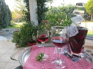 Λικέρ αρμπαρόριζας με κόκκινο κρασί!