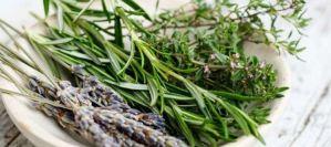 Τα βότανα που καταπολεμούν άγχος και στρες
