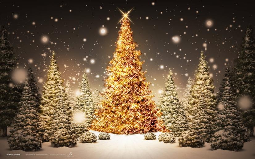 Read more about the article Το θαύμα των Χριστουγέννων (Αληθινό Περιστατικό)