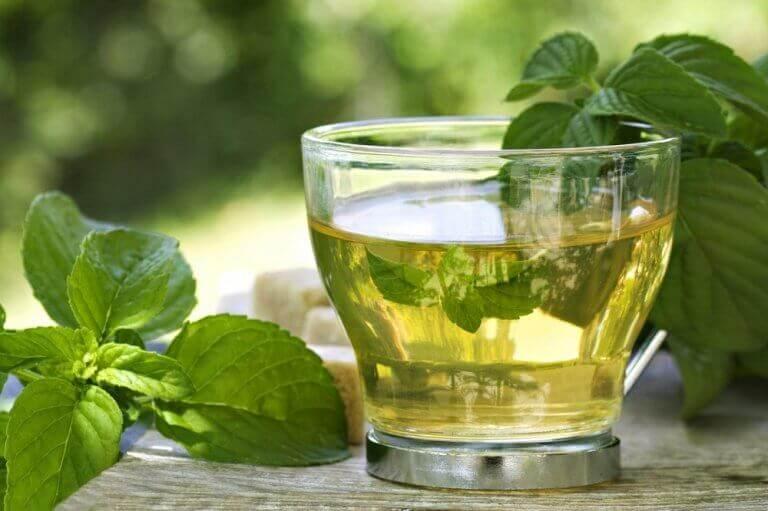 Πράσινο τσάι με μέντα