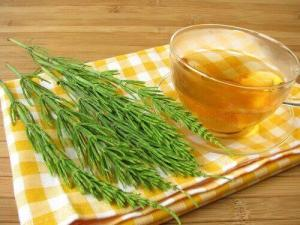 Τσάι από εκουιζέτο για την καταπολέμηση των λοιμώξεων του ουροποιητικού συστήματος
