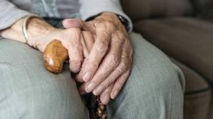 Read more about the article Θεσσαλονίκη: Συνέλαβαν 80χρονη που πουλούσε χόρτα χωρίς άδεια