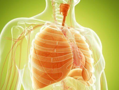 Φυσική  θεραπεία για την αποτοξίνωση των πνευμόνων σας με κουρκουμά, κρεμμύδι και τζίντζερ.