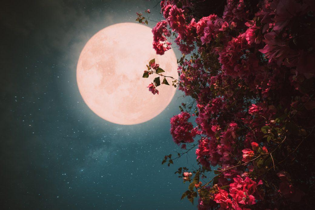 Read more about the article Την Πέμπτη 24 Ιουνίου, το «Φεγγάρι της Φράουλας», η 3η και τελευταία υπερπανσέληνος του 2021