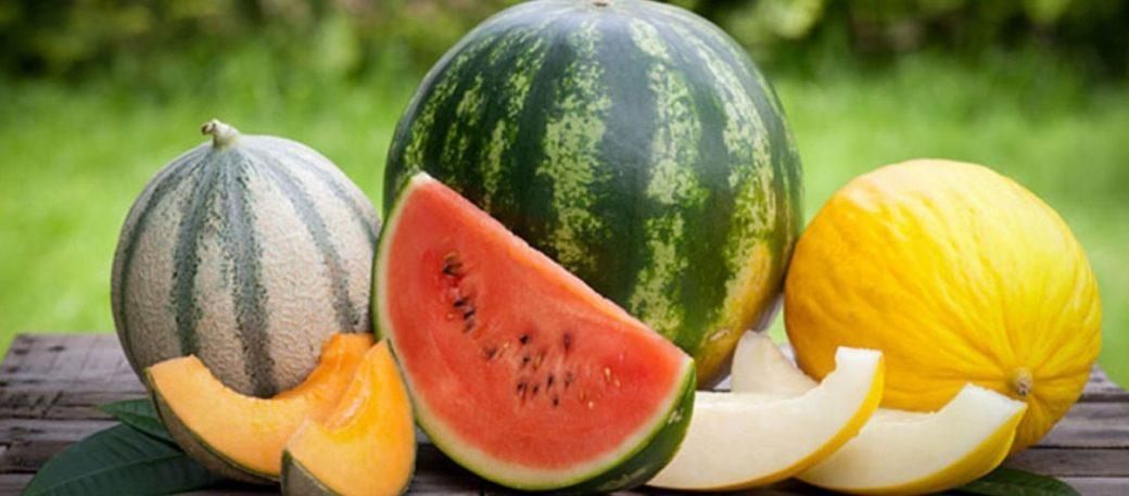 Read more about the article Καρπούζι ή πεπόνι; Ποιο είναι καλύτερο για την υγεία μας;