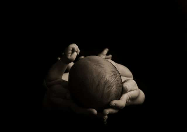 A New-born Life On A Dark Background