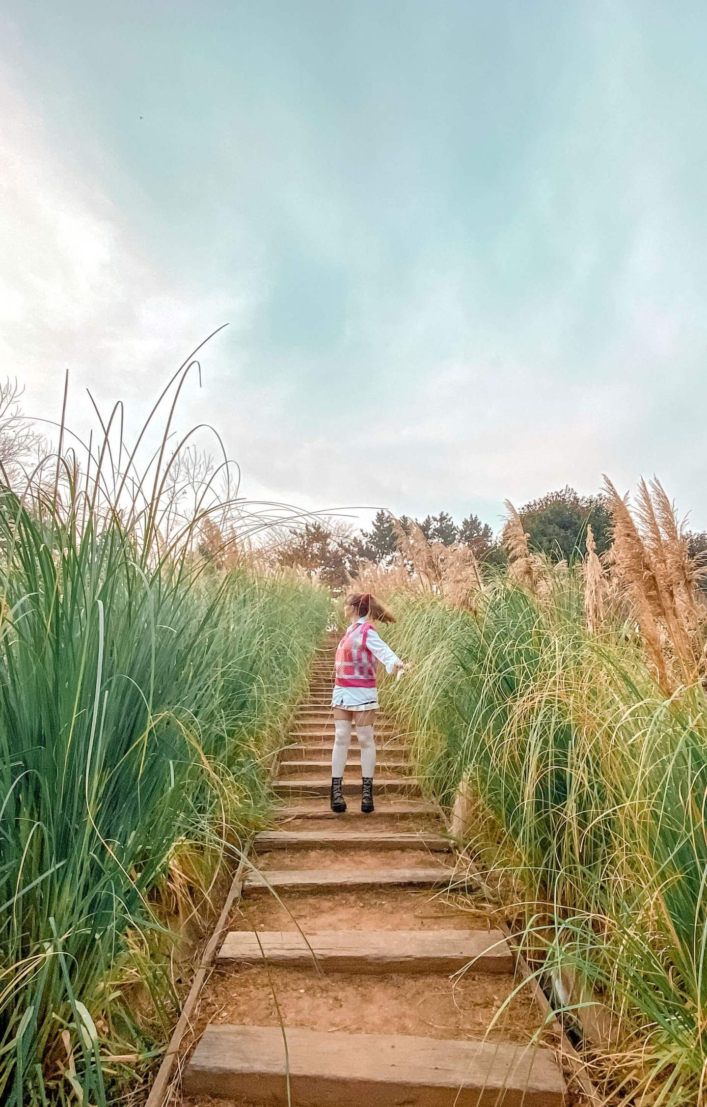 fii standing in a central path among tall pampas grass at farm kamille