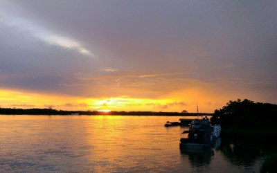 Crearán corredor ambiental para proteger la Amazonia
