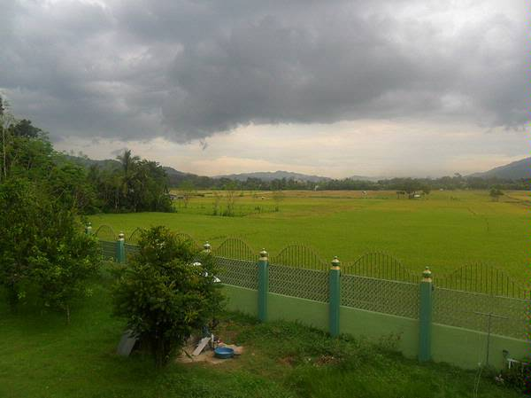 Real Estate House Amp Lot For Sale In Tubao La Union