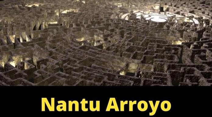 Retos 2021: Nantu Arroyo