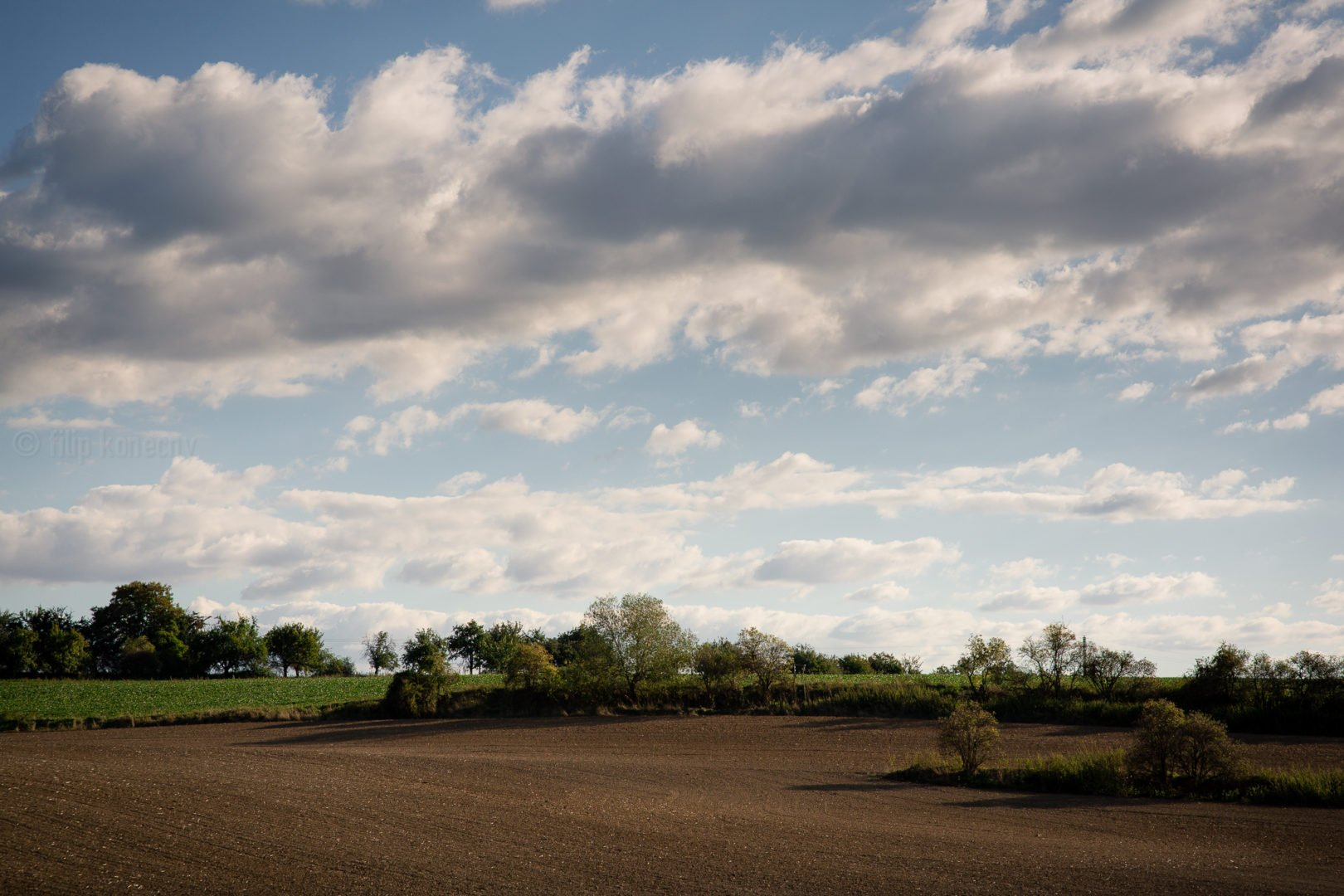 landscape of crop field at uvaly u prahy