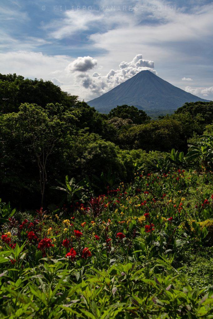 volcano, Concepción, Nicaragua, Ometepe, tropical, flowers