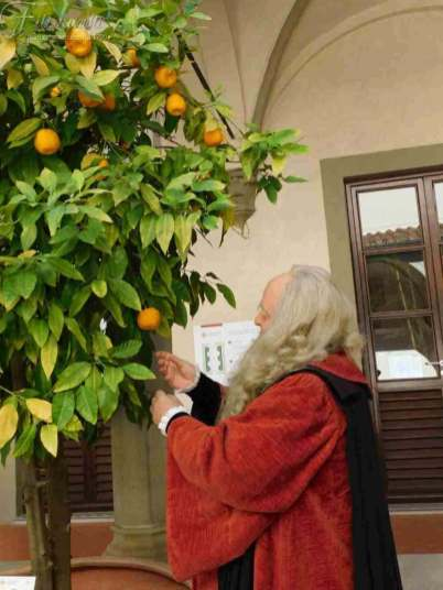Passeggiata Botanica Leonardiana all'interno del Chiosco dell'Ospedale di Santa Maria Nuova (