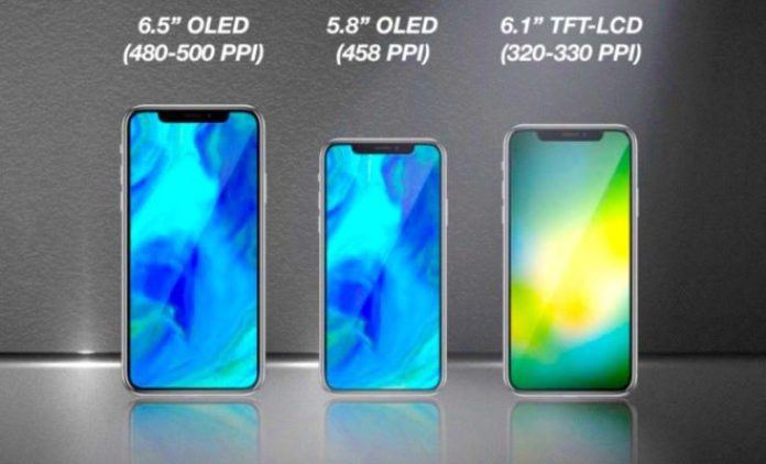 Apple   Launch   iPhone X    6.1-inch LCD Display   Single Rear Camera    No 3D Touch