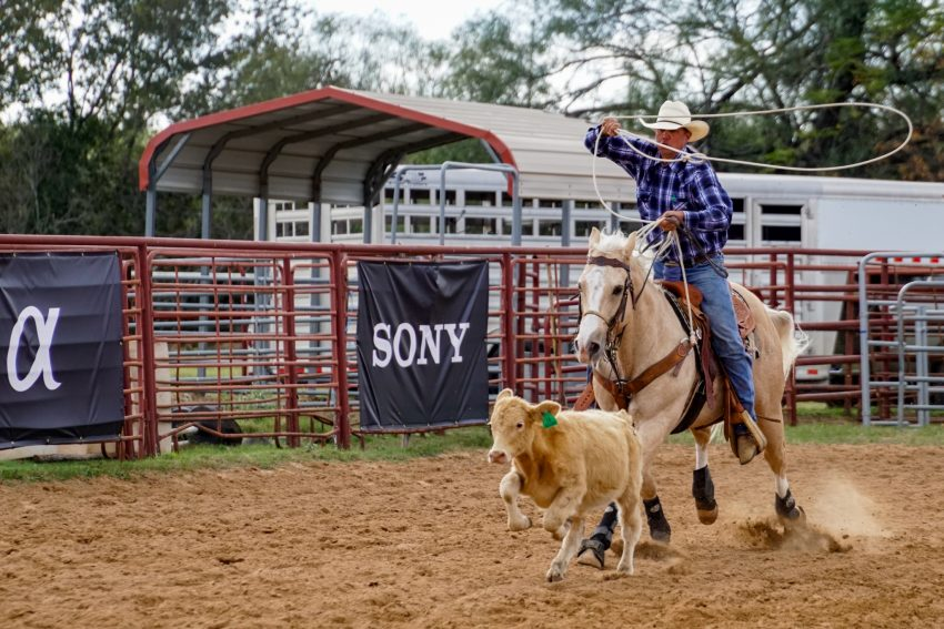 Calf Roping at Windsong Farm Texas with the Sony Alpha 6500_dsc1540-2