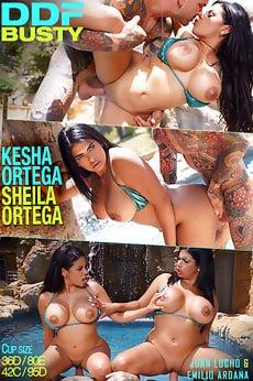 Kesha Ortega, Sheila Ortega latine gemene cu tate mari sex . 1