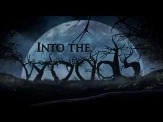 into_the_woods_filmforlife