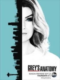 grey-s-anatomy-13