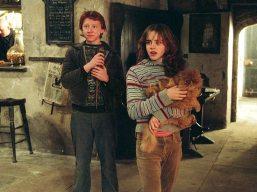 Grattastinchi - Harry Potter