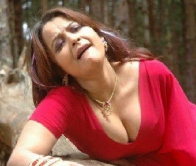 South Indian Actress Hot Cleavage_145337873730 Jpg