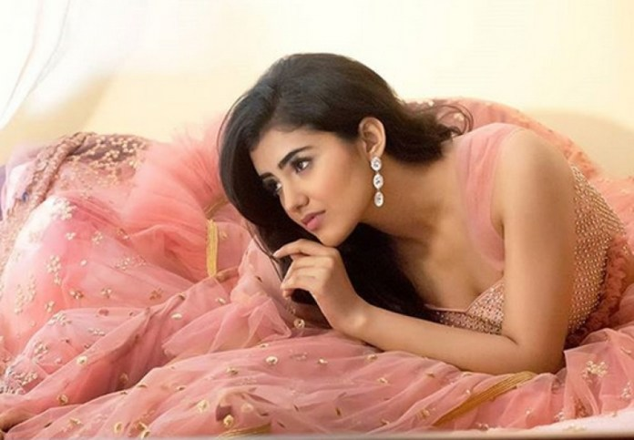 Malvika Cute Hot Pictures Indian actress pictures hot south indian actress