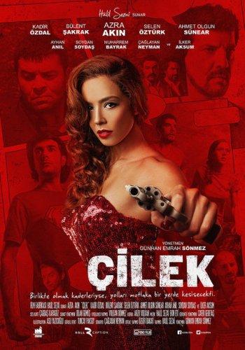 cilek-filmi