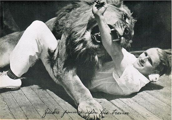 jackie-mgm-aslan-filmloverss