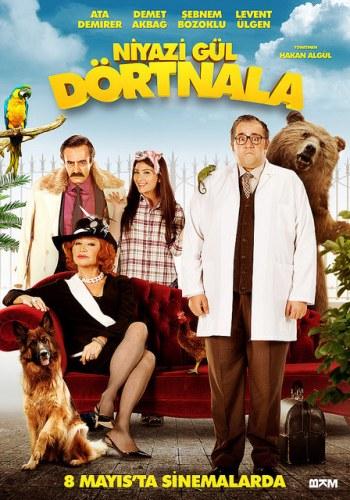 niyazi-gul-dortnala-poster-filmloverss