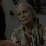 misafir-2-filmloverss