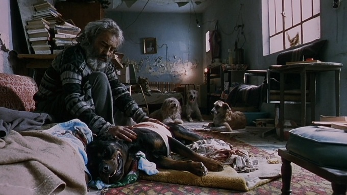 amores-perros-2000-filmloverss