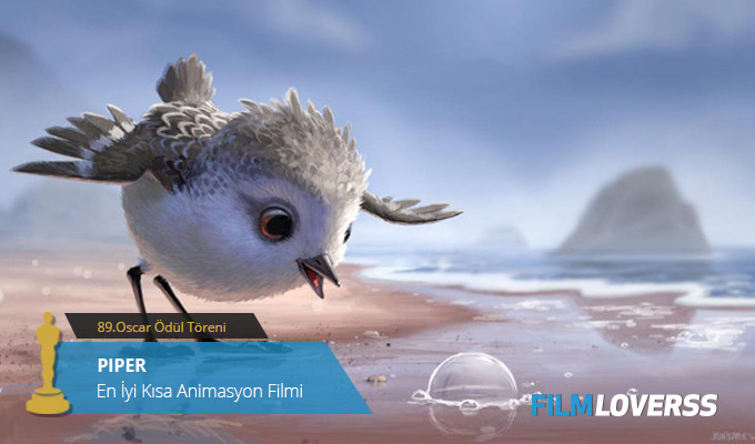 en-iyi-kisa-animasyon-filmi-piper-filmloverss