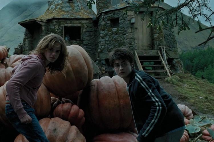harry-potter-and-the-prisoner-of-azkaban-filmloverss