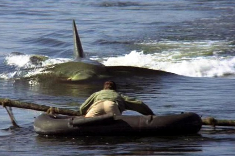 jaws-2-filmloverss