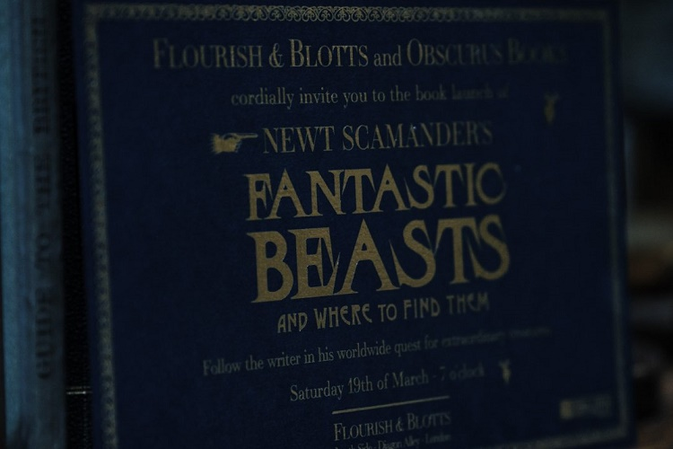 5-akıl-almaz-fantastic-beasts-and-where-to-find-them-teorisi-3-filmloverss
