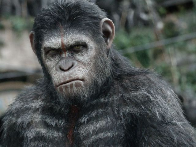 Dawn of The Planet of the Apes'ten Yeni Görseller Yayınlandı -1