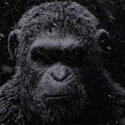 Bad Ape – A New War For The Planet Of The Apes Clip Arrives