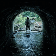 Ghost Stories Gets An Official UK Release Date