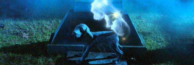 Les Copains et la Légende du chien maudit