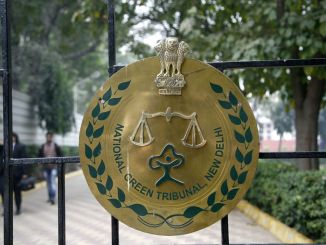 Eight DU College Principals Approach NGT Against Highrise in North Campus