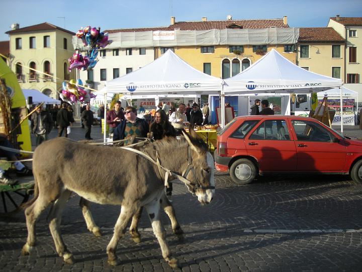 Katemose Castelfranco